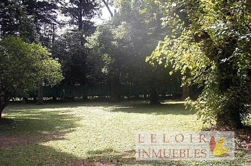Moreno – Codigo 44522331